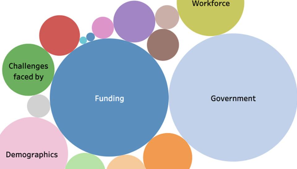 Data visualization: ICDA Not-for-Profit Governance Roadmap 2020