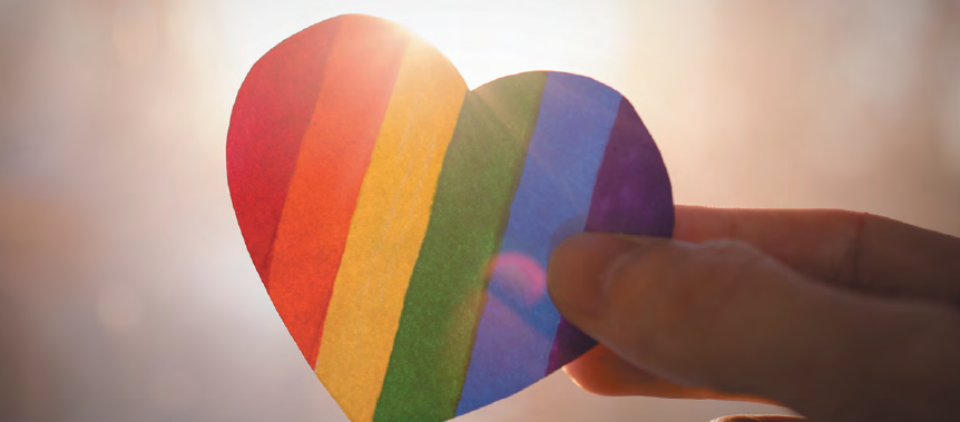 First winner of the LGBTIQ+ Inclusion Diploma of Governance scholarship round announced!